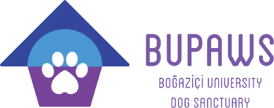 BUPaws